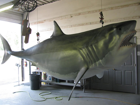 Great White Shark Fishing