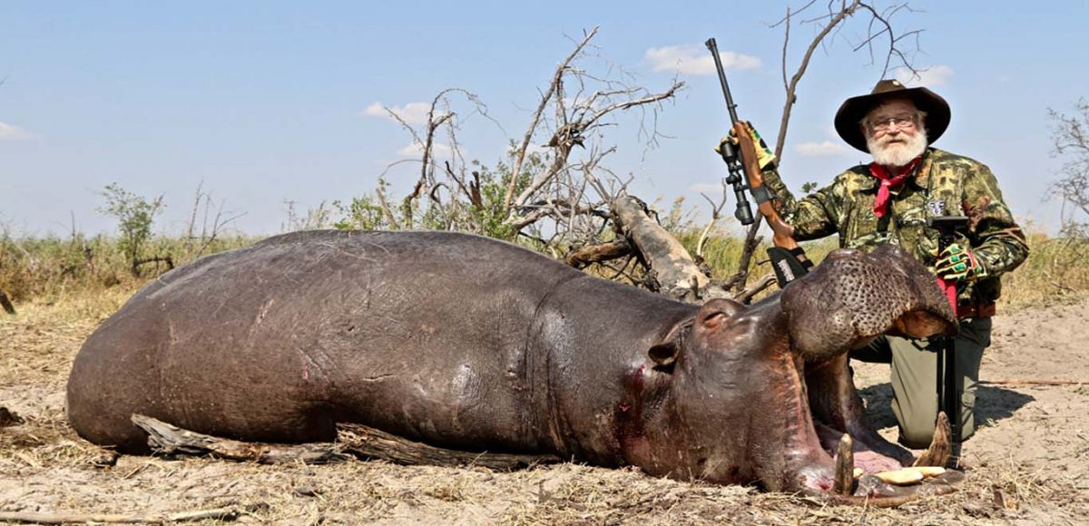 Hippo Hunting